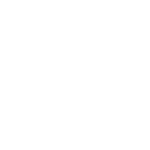 Local Now Sports